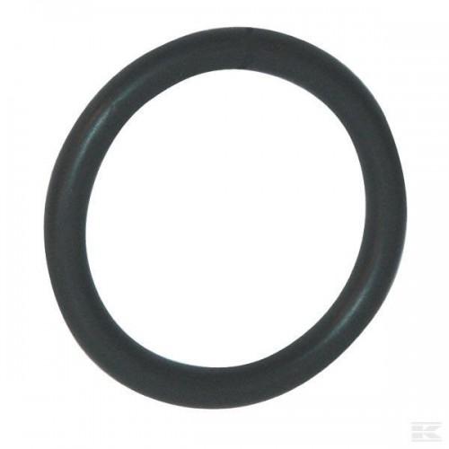 Уплотнительное кольцо 82060094